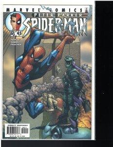 Peter Parker: Spider-man #45 (Marvel, 2002)