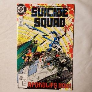 Suicide Squad 33 Fine