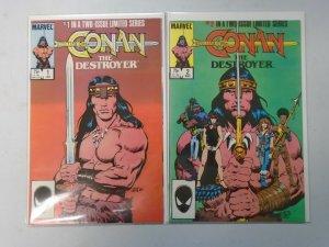 Conan the Destroyer set #1+2 DIR starring Arnold Schwarzenegger 8.0 VF (1985)