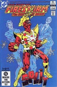 Fury of Firestorm (1982 series) #13, NM- (Stock photo)