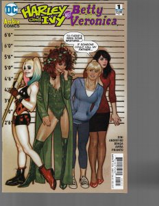 Harley and Ivy Meet Betty and Veronica #1 (DC, 2017) NM Adam Hughes Variant