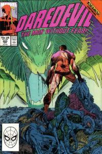 Daredevil (1964 series) #265, VF+ (Stock photo)
