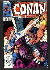 Conan the Barbarian #204 (1988)