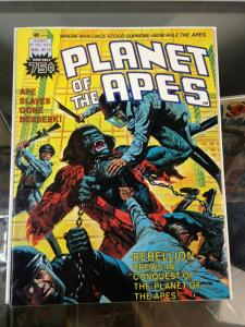 Planet of the Apes 18 VF Marvel Magazine (Mar. 1976)