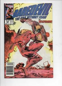 DAREDEVIL #242, 243 244 , 247 VF+, 249 VF/NM, Wolverine, Man without Fear, 5 iss