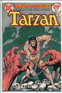 TARZAN #224 1973-DC-EDGAR RICE BURROUGHS-JOE KUBERT JUNGLE ART-SKULL-vf minus