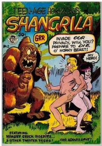 TEEN AGE HORIZONS OF SHANGRILA 2 VG+ 1972