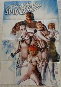 AMAZING SPIDER-MAN Promo Poster, 24 x 36, 2011, MARVEL Fantastic Four Unused 233