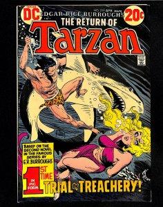 Tarzan (1972) #219