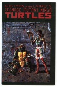 TEENAGE MUTANT NINJA TURTLES #44 comic book 1992 NM-