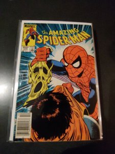 THE AMAZING SPIDER-MAN #245
