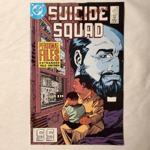 Suicide Squad 31 Fine