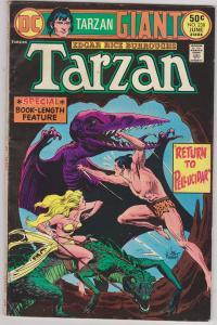 Tarzan #238