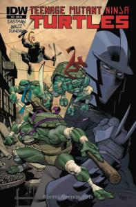 Teenage Mutant Ninja Turtles (5th Series) #12C VF/NM; IDW   save on shipping - d