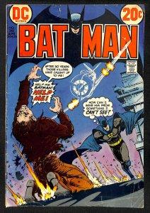 Batman #248 (1973)
