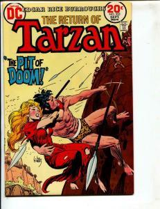 Tarzan-#223-1973-DC-BRONZE-AGE-Joe Kubert-NM-