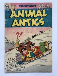 Animal Antics 43