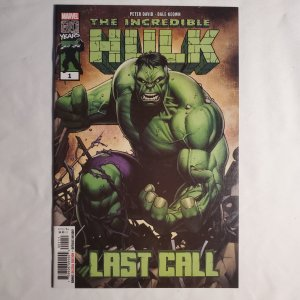 Incredible Hulk Last Call 1 Near Mint Cover by Dale Keown
