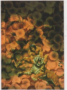 1994 Comic Images All Chromium Conan II Prism Card #P2