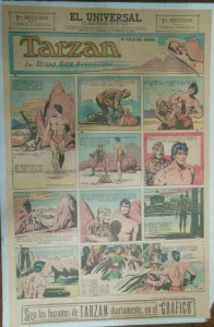Tarzan Sunday Page #623 Burne Hogarth from 2/14/1943 in Spanish! Full Page Size