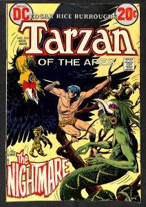 Tarzan #214 (1972)