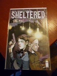Sheltered #3 (2013)