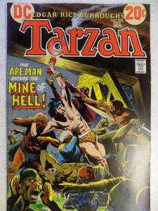 TARZAN OF THE APES # 218 DC KUBERT