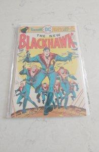Blackhawk #244 (1976)