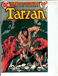 Tarzan-#224-1973-DC-BRONZE-AGE-Joe Kubert-NM-