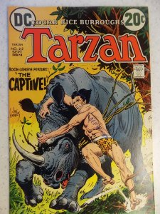 TARZAN OF THE APES # 212 DC KUBERT