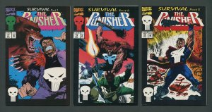 Punisher #77  #78  #79 (Survial SET) 8.0 VFN 1993