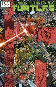 Teenage Mutant Ninja Turtles (5th Series) #48A VF; IDW | save on shipping - deta