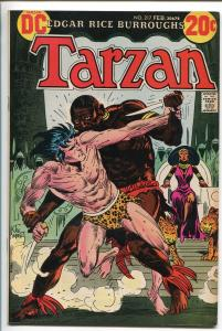 TARZAN #217 1973-DC-EDGAR RICE BURROUGHS-JOE KUBERT JUNGLE ART-vf+