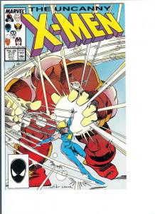 The X-Men #217 - Copper Age - Vol. 1, May, 1987 (NM-)