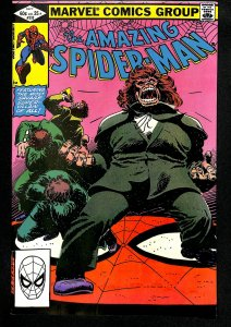 The Amazing Spider-Man #232 (1982)