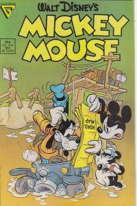Mickey Mouse #243