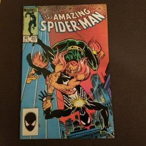 Amazing Spider-Man 257