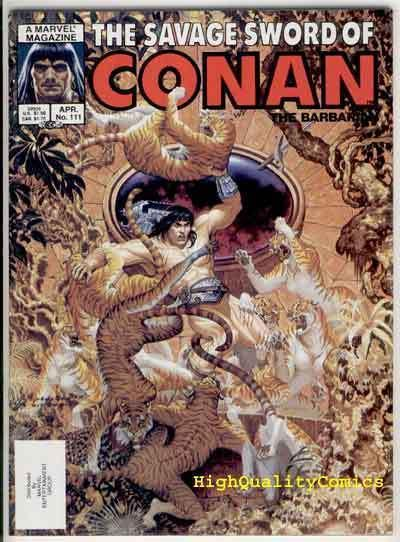 SAVAGE SWORD of CONAN #111, NM, Ernie Chan, Hickman, more SSOC in store