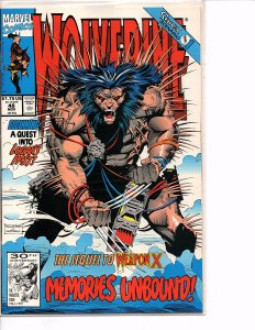 Marvel Comics Wolverine #48 Marc Silvestri NM Sabretooth