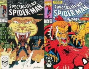 SPECTACULAR SPIDERMAN 171-172  vs The PUMA!