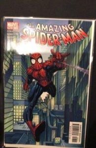 The Amazing Spider-Man #53 (2003)