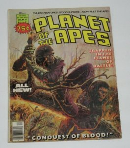 Planet of the Apes #27 1976 Magazine Comic FN