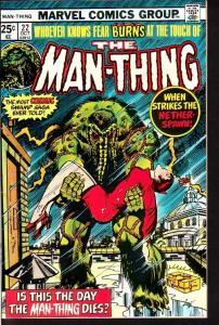 MAN-THING #22-HOWARD THE DUCK-HIGH GRADE MARVEL VF/NM