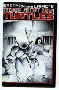 TEENAGE MUTANT NINJA TURTLES #17-1988-early issue VF/NM