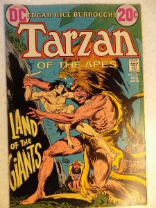 TARZAN OF THE APES # 211 DC KUBERT