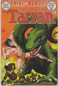 Tarzan #228