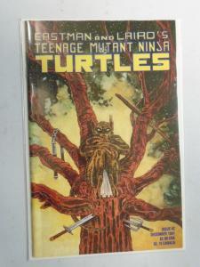 Teenage Mutant Ninja Turtles #42 (1991) 8.0 VF