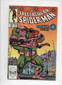 Peter Parker SPECTACULAR SPIDER-MAN #156 VF, Banjo 1976 1989 more in store