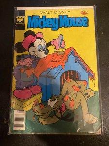 WALT DISNEY'S MICKEY MOUSE #186 WHITMAN COMICS 1978