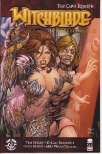 Witchblade #156B VF; Image | save on shipping - details inside